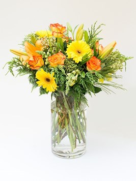 TFG: Sunshine in a Vase